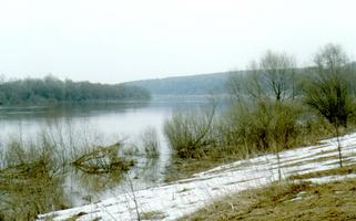 Заливные луга близ Поленово