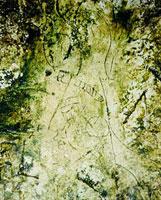 Граффити Майя