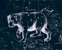 """Созвездие """"Большая медведица"""""""
